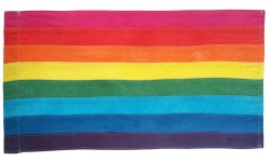 Rainbow flag with eight horizontal stripes. From top to bottom they are pink, red, orange, yellow, green, turquoise, indigo, and violet.